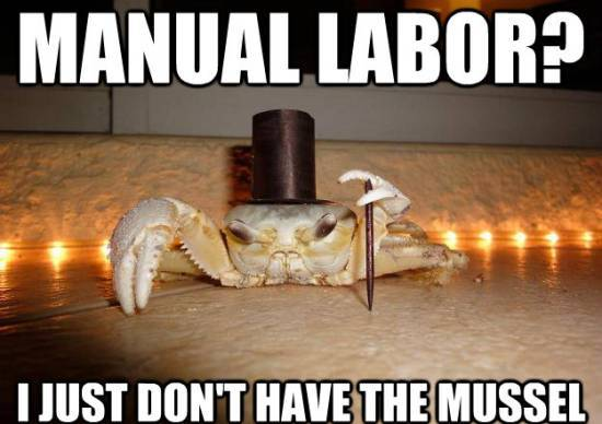 fancy crab manual labor Meet The Top 1 Percent: Fancy Crab