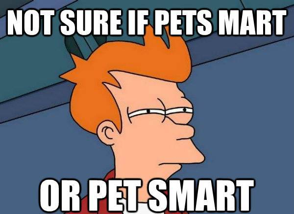 futarama fry petsmart The Best Futurama Fry Memes, Part II