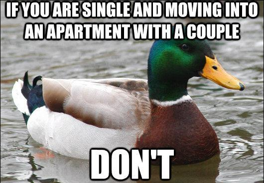 actual advice mallard moving into apartment with couple The Genius Of Actual Advice Mallard