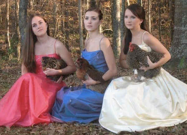 Prom Fail Photos With Chickens